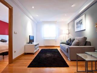 Cozy 2 bedroom Condo in San Sebastian - Donostia with Internet Access - San Sebastian - Donostia vacation rentals