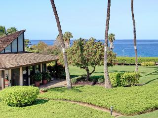 Hale Kamaole 1 Bedroom 210 - Kihei vacation rentals