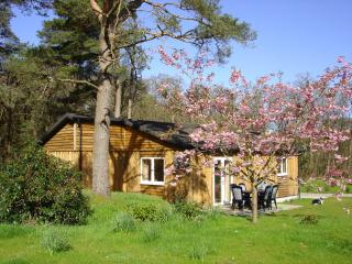 Nice 3 bedroom Oban Chalet with Internet Access - Oban vacation rentals
