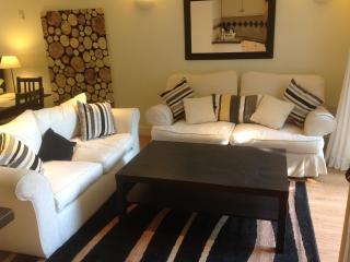 Beautiful Studio with Internet Access and Television - Worcester vacation rentals