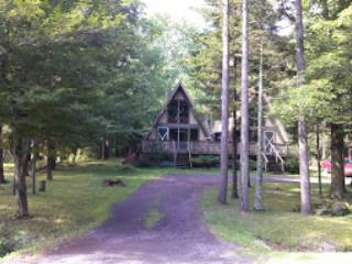 Hunter Mountain Walking Distance! - Hunter vacation rentals