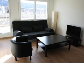 Violet - Letzigrund HITrental Apartment Zurich - Zurich vacation rentals