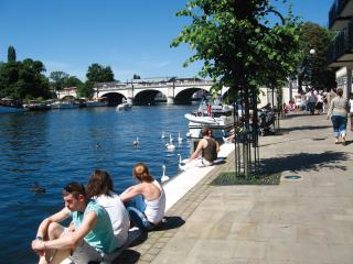 1 bedroom Apartment with Internet Access in Kingston upon Thames - Kingston upon Thames vacation rentals