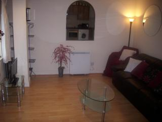 Lovely Condo with Internet Access and Washing Machine - Dublin vacation rentals