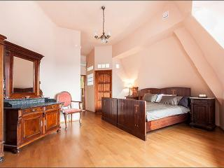 BASILICA ATTIC: CASTLE VIEW - Budapest vacation rentals