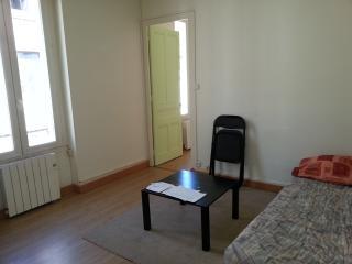 Cozy 1 bedroom Apartment in Saint-Étienne with Internet Access - Saint-Étienne vacation rentals