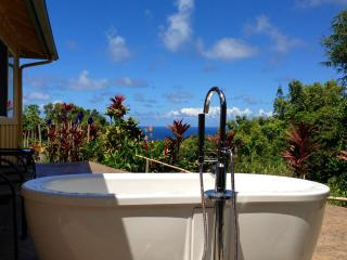 Whispering Bamboo cottage ocean views, pool, WIFI - Haiku vacation rentals