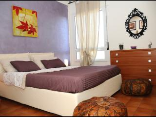 Nice Guest house with Internet Access and A/C - Rufina vacation rentals