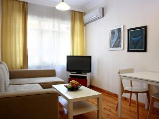 1 bedroom Condo with Internet Access in Istanbul - Istanbul vacation rentals
