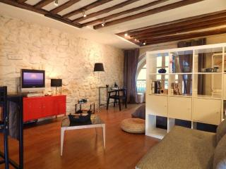 2 STEPS AWAY FROM LOUVRE - NICE DESIGN -Near metro - Paris vacation rentals