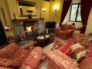 Nice 3 bedroom Cottage in Talybont - Talybont vacation rentals