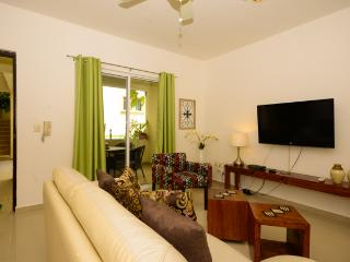 ATHENA 1 - just 1/2  a block from  Mamitas beach! - Playa del Carmen vacation rentals