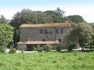 Cortona villa in beautiful Tuscan countryside - Cortona vacation rentals