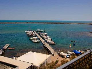 2 bedroom Condo with A/C in Mola di Bari - Mola di Bari vacation rentals