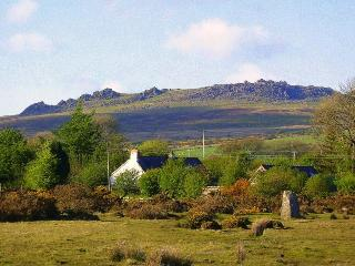 Cottage studio by ancient stone circle - Mynachlogddu vacation rentals