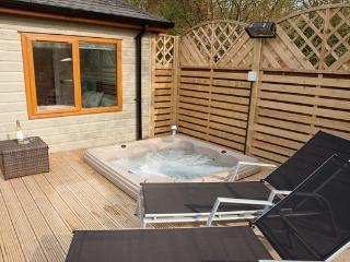 Bright Lodge with Television and Balcony - Windermere vacation rentals