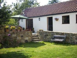 Beautiful Cottage with Internet Access and Television - Castleton vacation rentals