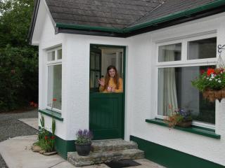 Nice Cottage with Internet Access and Dishwasher - Omagh vacation rentals