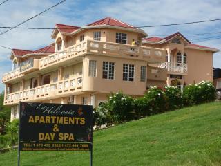 La Heliconia - Grand Anse vacation rentals