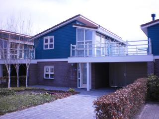Water holidayhouse Zilverreiger 2 at the waterfront - Workum vacation rentals