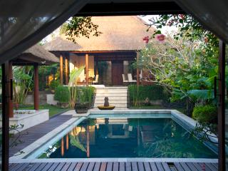 Villa Damee - Private Villa 3brm Ubud - Ubud vacation rentals