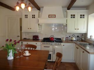 Nice 2 bedroom Cottage in Omagh - Omagh vacation rentals