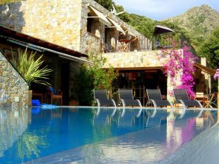 LUXURY VILLA -POOL 5x10 - O VIS A VIS - TOTAL CALM - Calvi vacation rentals