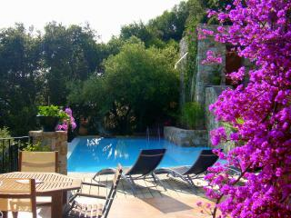 LUXURY VILLA -POOL 5x10 - O VIS A VIS - TOTAL CALM - Calvi vacation rentals