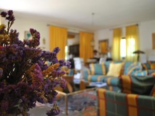 Beautiful Villa with Internet Access and Dishwasher - Castelnuovo di Farfa vacation rentals