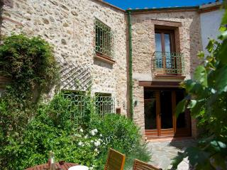 Chez Charlotte charming character house, free wifi - Fourques vacation rentals