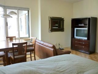 $3000 / 600ft² - Gorgeous Studio 5 min from Centra - New York City vacation rentals