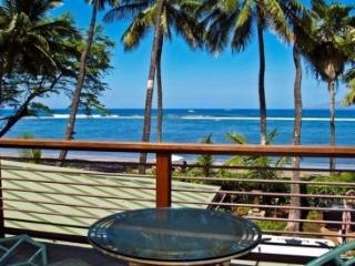 Maui Sandy Beach Estate - Lahaina vacation rentals