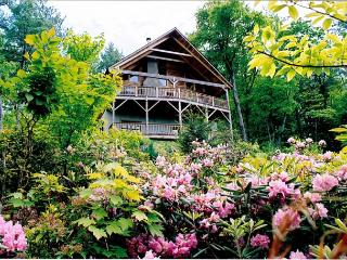 Ollie's Overlook  fabulous multi-level cabin located in Blackberry Gorge - Blowing Rock vacation rentals