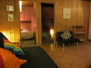 Comfortable Condo with Internet Access and Wireless Internet - Argentiere vacation rentals