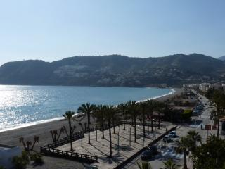 3 bedroom Condo with Internet Access in La Herradura - La Herradura vacation rentals