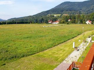 Just perfect Celadna/Ostravice - Čeladná vacation rentals