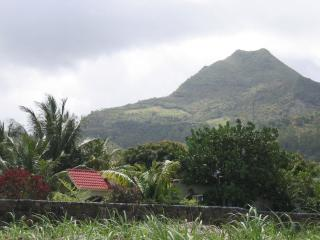 Bungalow Shane: ( Bed & Breakfast Accommodation) - Anse Jonchee vacation rentals