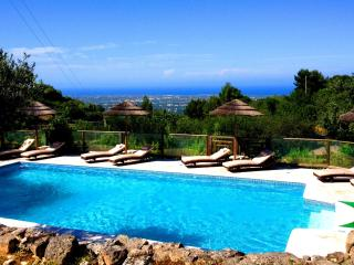 Villa Silvana, a stunning large country residence - Puglia vacation rentals