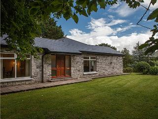 Charming 3 bedroom Kenmare House with Television - Kenmare vacation rentals