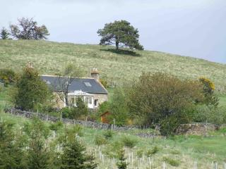 Nice Cottage with Satellite Or Cable TV and Television - Strathdon vacation rentals
