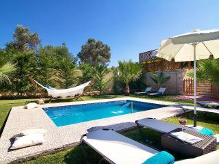 Villa Dimitrios, luxury retreat! - Panormo vacation rentals