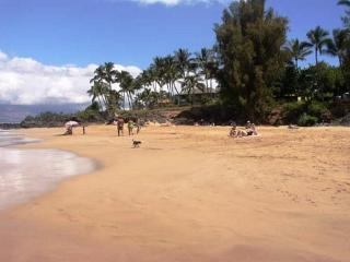 2B/2Ba Ocean View Unit, Perfectly Situated 100 Yards from Kamaole Beach I - Kihei vacation rentals