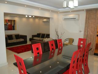 Comfortable 3 bedroom Cairo Condo with Internet Access - Cairo vacation rentals