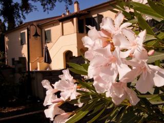 Il BoscoAgriturismo- Appartamento nella campagna - Marina di Castagneto Carducci vacation rentals