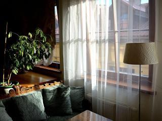 Exclusive design flat in Old Town - Vilnius vacation rentals