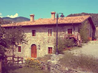 Agriturismo Borgo del Sole, apartment Aia Vecchia - San Romano in Garfagnana vacation rentals