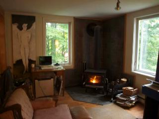 Charming renovated cottage, Ste Agathe des Monts - Sainte-Lucie-des-Laurentides vacation rentals