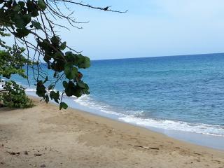 Cabarete East Beachfront - Cabarete vacation rentals