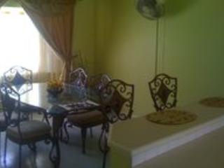 Spacious 3 bd condo in Ironshore, Jamaica - Image 1 - Whitehouse - rentals