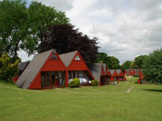 Wonderful Chalet with Internet Access and Tennis Court - Kingsdown vacation rentals